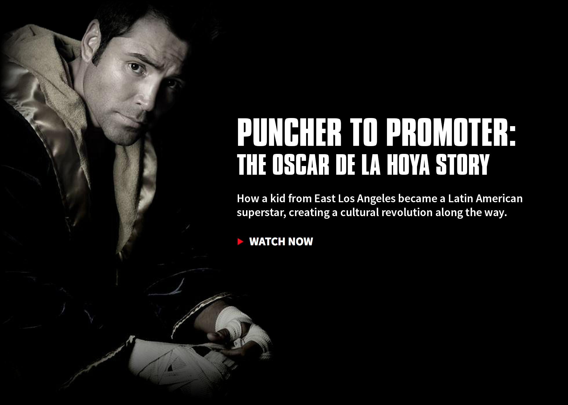 Puncher to Promoter